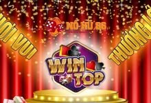 Photo of Tải WinTop   WinTop.live – iOS/Android/PC/OTP
